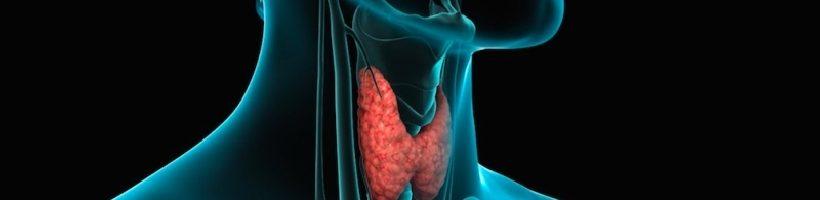 Terapia dell'ipotiroidismo: le diverse fomulazioni della L-TIROXINA