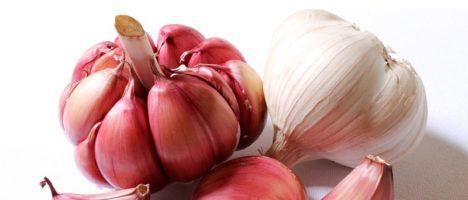 Cibo sano, pulito e giusto: l'aglio
