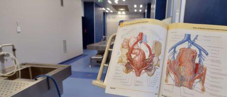 Via libera del Senato alla legge sulla donazione dei cadaveri per fini di studio
