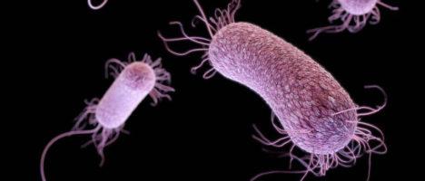 """Infezioni ospedaliere: emergenza """"Superbugs"""""""