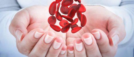 Ospedale Papardo: porte aperte ai donatori di sangue, da ottobre, la seconda domenica di ogni mese