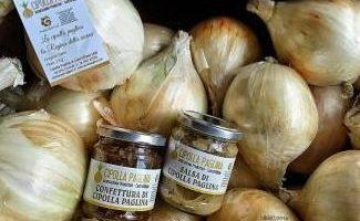 Slow food: la cipolla