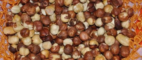 Slow food: le Nocciole