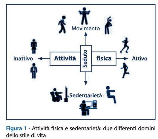 Sedentarietà e inattività fisica durante la pandemia di covid-19: perché dovremmo essere fisicamente attivi